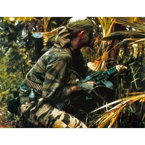 Uniforme Tiger Stipe SEAL, Vietnam