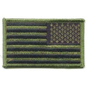 Parche Bandera USA Verde, estrellas a izquierda